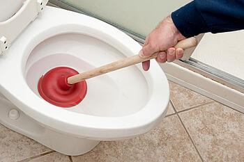 plunger in toilet