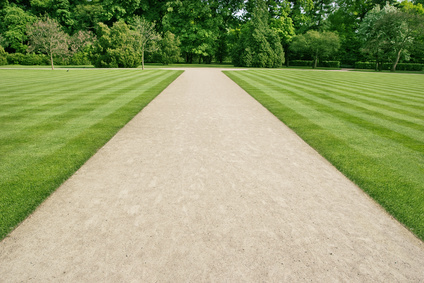 A pathway on a cut green lawn.