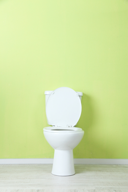 Wasting water? Fixing your home toilet doesn't have to be a challenge.