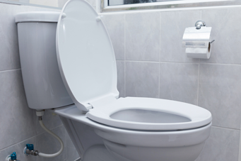 Pressure-assist toilets largely resolve high water consumption issues.