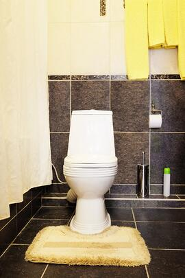 Dual-flush toilets can help you save hundreds of dollars on annual water spending.