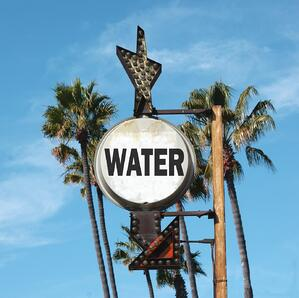 Keep your trees alive by following these drought watering tips.