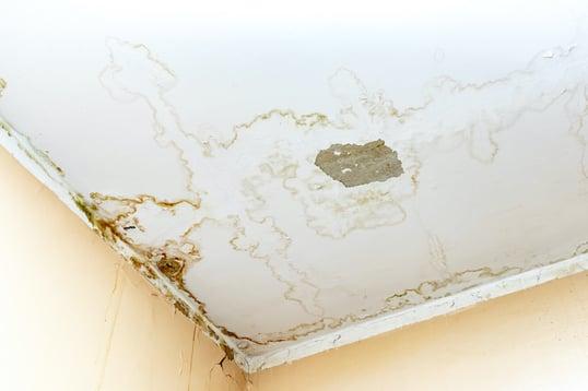 ceiling-leaking
