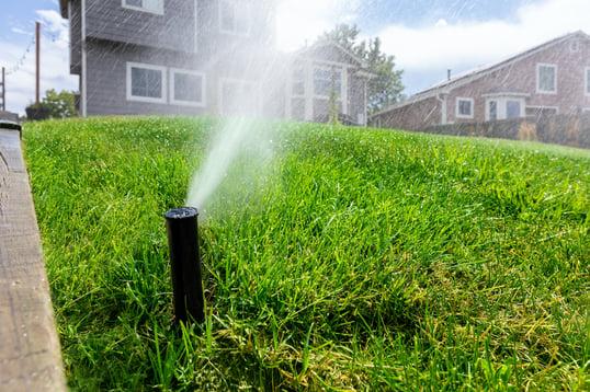 residential irrigation plumbing system