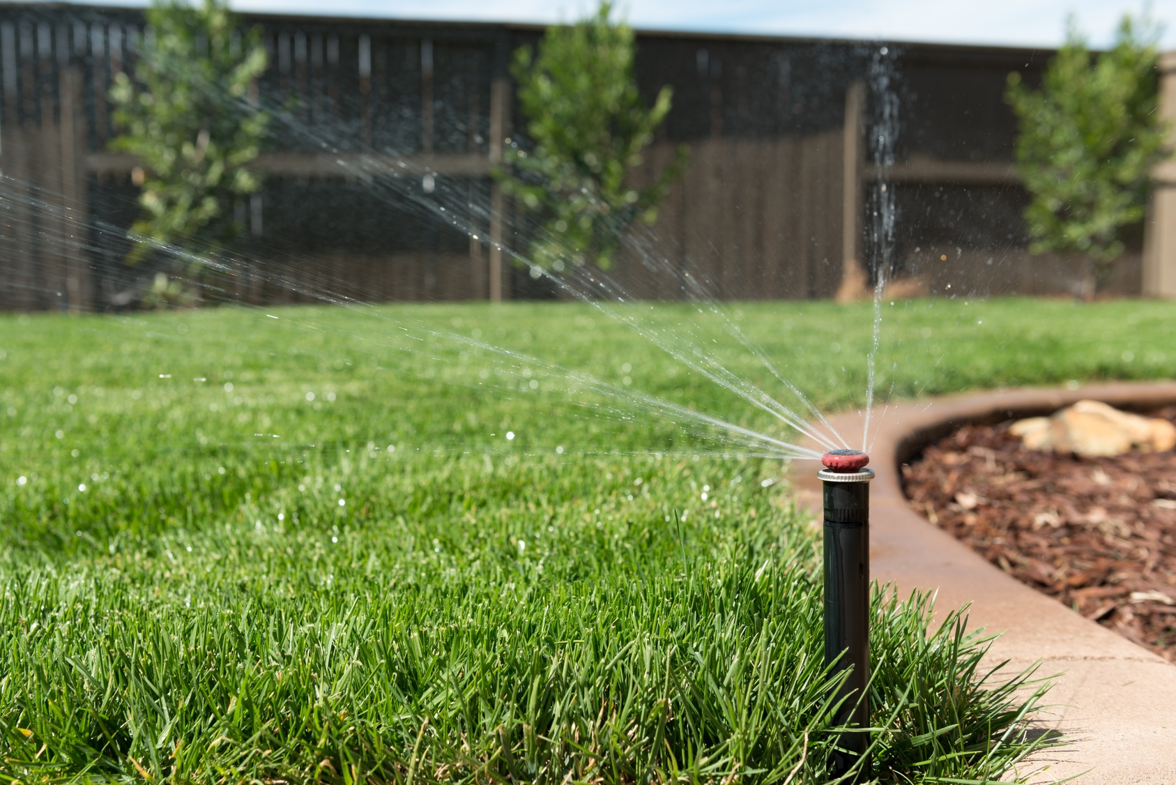 Step-by-Step Guide to Repairing a Sprinkler Head or Line